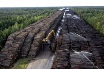 Worlds Largest Storage of Wood in Sweden