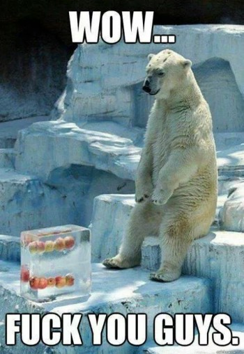 Polar bears have feelings too you know...