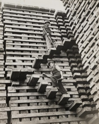 Seattle Cedar Mill, 1919