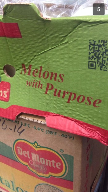 Melons with purpose