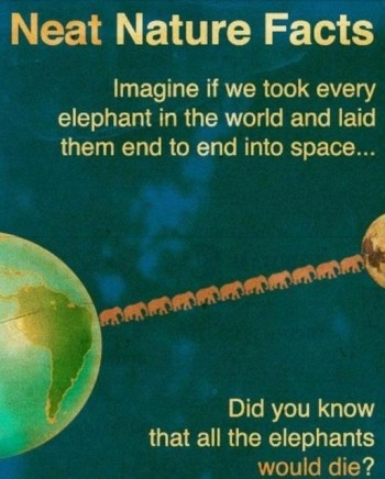 Neat Nature Facts