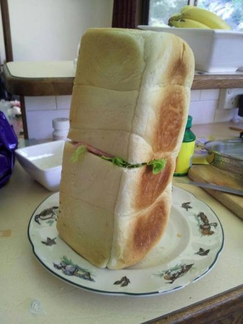 Only had enough bread for one sandwich